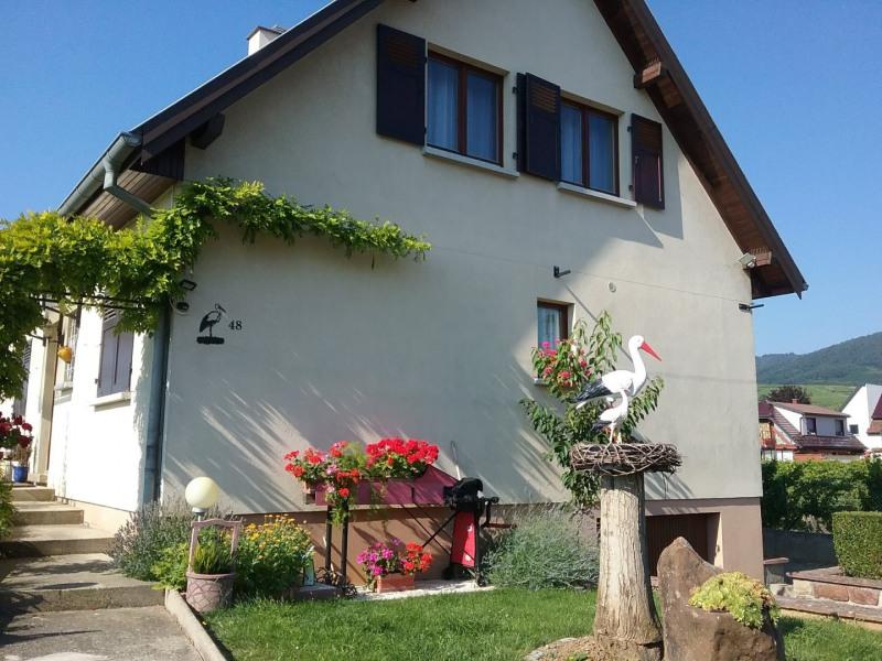 Gîte A la Cigogne à Wettolsheim 68000 Alsace - Wettolsheim