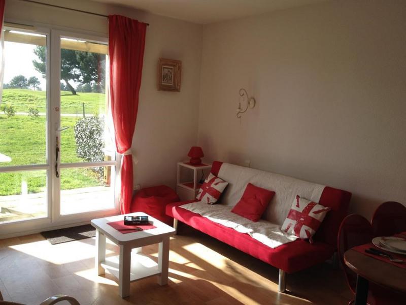 coin séjour , terrasse, jardinet 10 m2