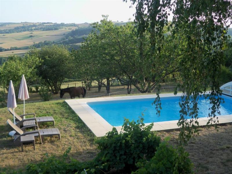 La piscine privée (abri et transats)