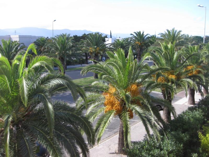 Location vacances Saint-Cyprien -  Appartement - 6 personnes - Climatisation - Photo N° 1