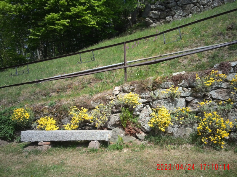 Location vacances Orbey -  Gite - 4 personnes - Barbecue - Photo N° 1