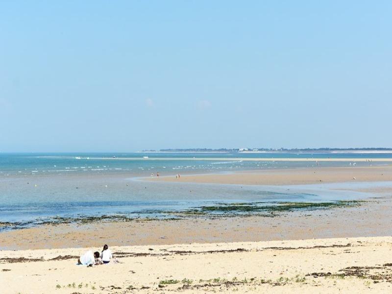 Accès direct  plage  par le jardin
