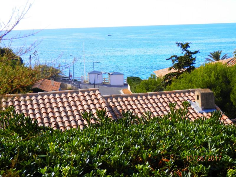 vue depuis le jardin sur la mer et plage