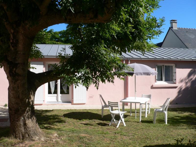 la maison vue du jardin toiture de zinc neuve