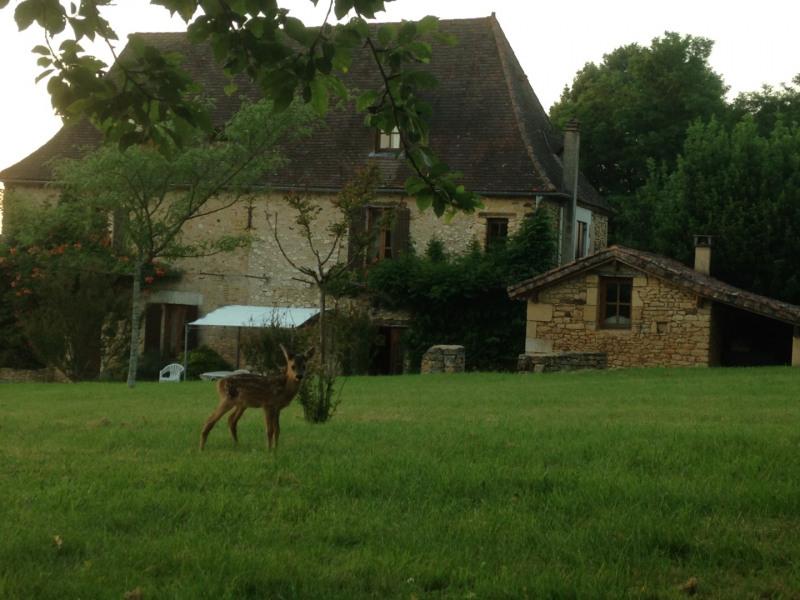Location vacances Siorac-en-Périgord -  Maison - 14 personnes - Barbecue - Photo N° 1