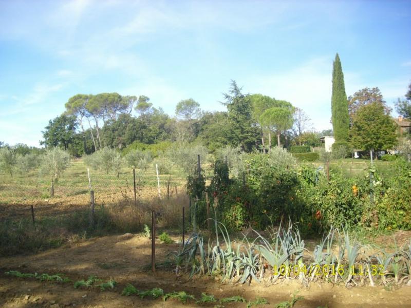 Potager avec champ d'oliviers.