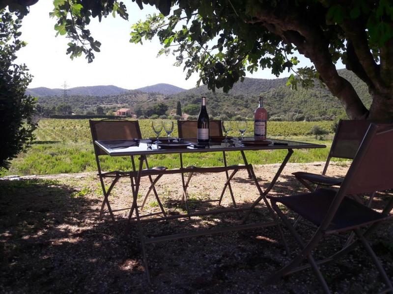 Holiday rentals Bormes-les-Mimosas - House - 4 persons - BBQ - Photo N° 1