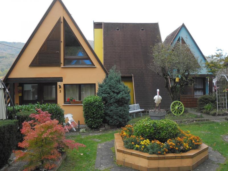 location gîtes toutes saisons Kaysersberg (village préféré des français 2017) - Kaysersberg