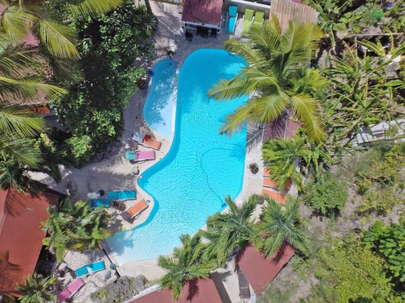 vue de drone au bord de la jungle