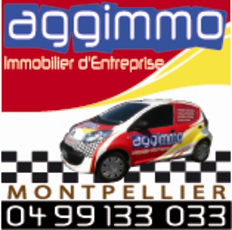 Vente Local commercial Buzignargues 0