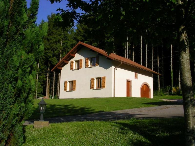 Ferienwohnungen Ban-sur-Meurthe-Clefcy - Haus - 8 Personen - Grill - Foto Nr. 1