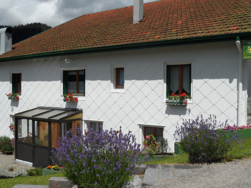 Location vacances La Bresse -  Gite - 8 personnes - Barbecue - Photo N° 1