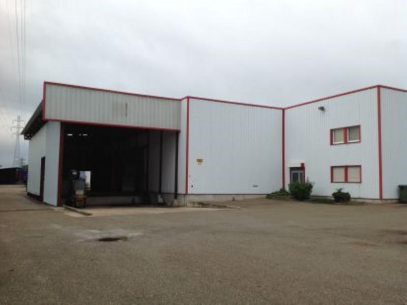 Location Local d'activités / Entrepôt Duttlenheim