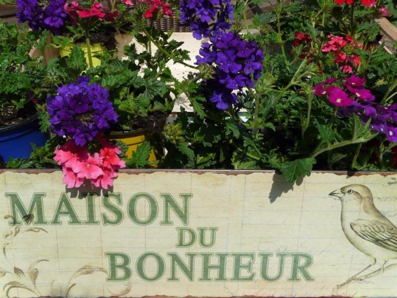 Location vacances Ribeauvillé -  Gite - 2 personnes - Jardin - Photo N° 1