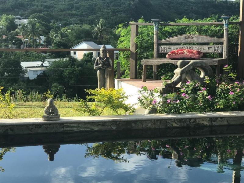 Espace piscine et jardin , vue mer et montagne