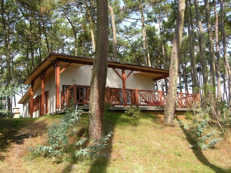 house Chalet avec grande terrasse vue lac