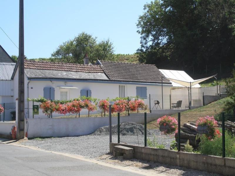 Location vacances Vernou-sur-Brenne -  Maison - 4 personnes - Barbecue - Photo N° 1