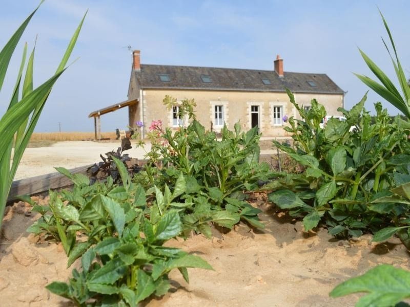 Location vacances Channay-sur-Lathan -  Maison - 14 personnes - Barbecue - Photo N° 1