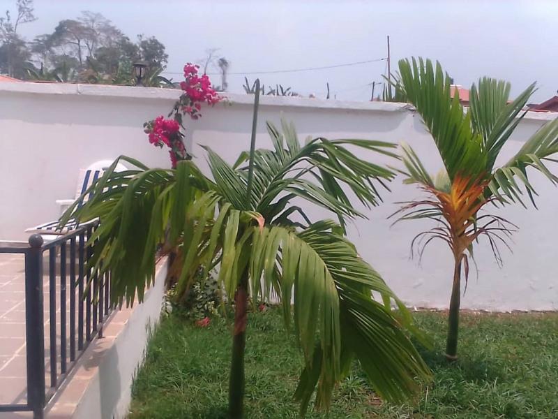 Location vacances Yaoundé VI -  Appartement - 8 personnes - Barbecue - Photo N° 1