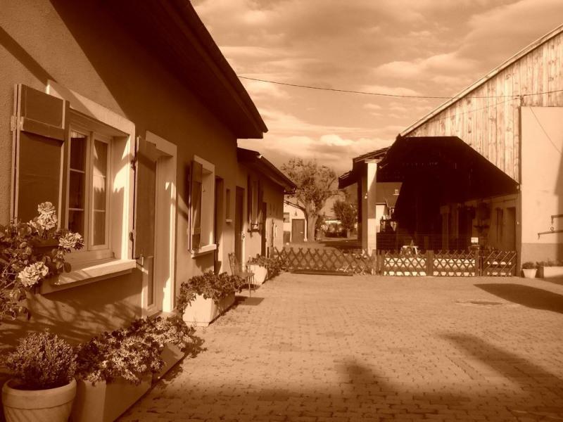 Location vacances Sausheim -  Gite - 4 personnes - Chaise longue - Photo N° 1