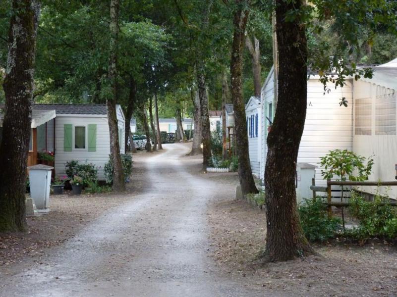 Camping Les Chênes Verts, 102 emplacements, 48 locatifs