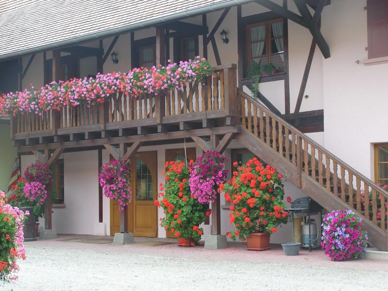 Location vacances Ostheim -  Gite - 6 personnes - Salon de jardin - Photo N° 1