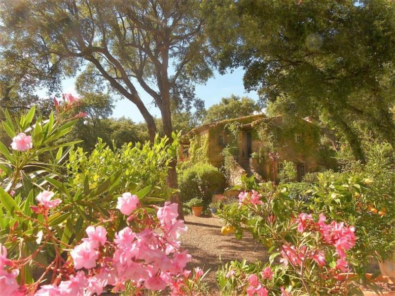 Location vacances Sainte-Maxime -  Chambre d'hôtes - 8 personnes - Chaise longue - Photo N° 1