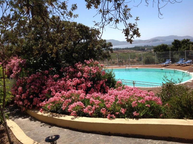Vue de la terrasse sur piscine et golfe Calvi