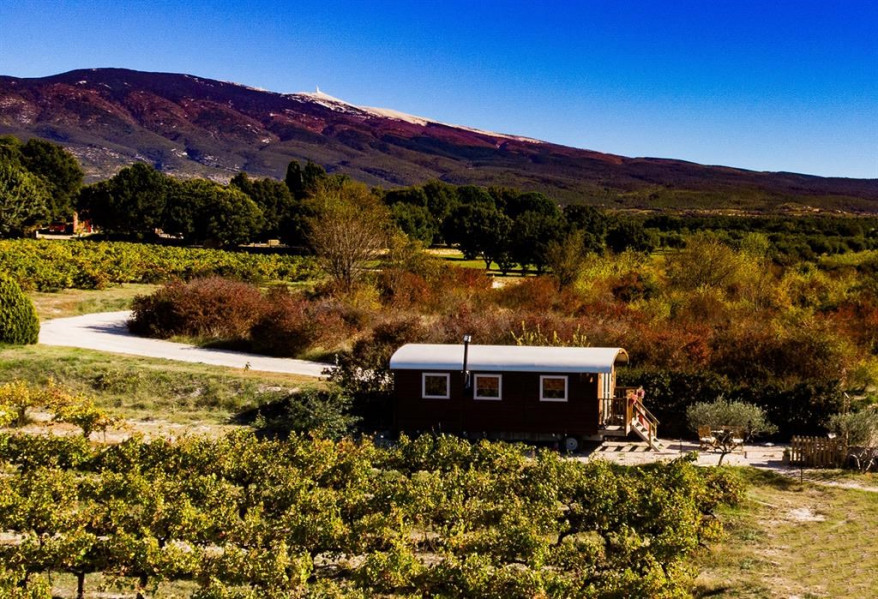 Holiday rentals Bédoin - Unusual - 2 persons - BBQ - Photo N° 1