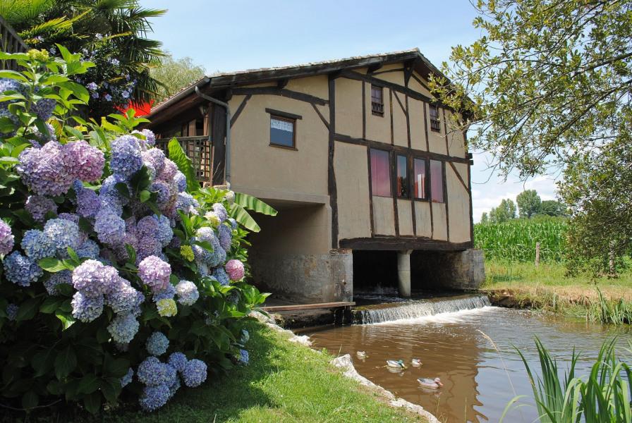 Location vacances Saint-Geours-de-Maremne -  Gite - 4 personnes - Barbecue - Photo N° 1
