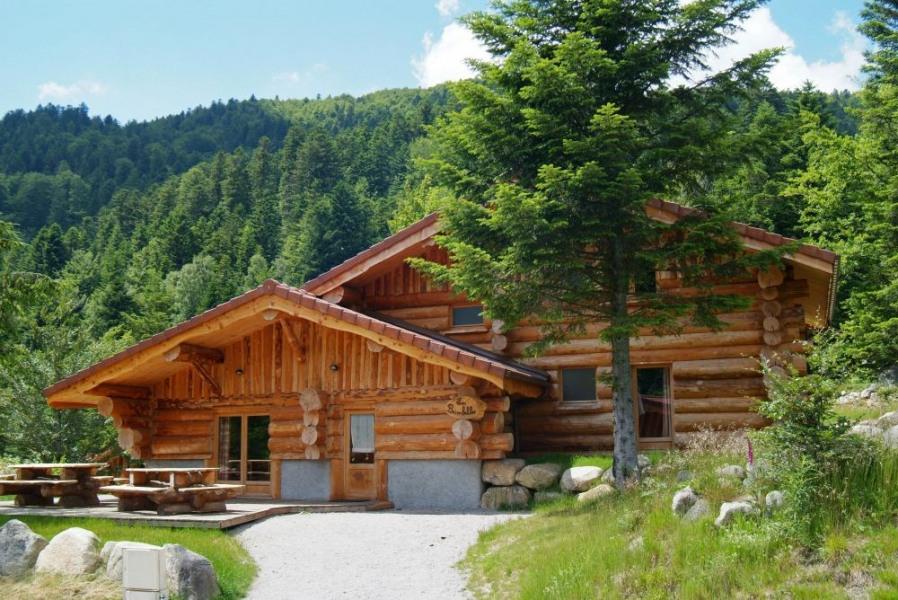 Superbe Chalet Rondins 14 à 15 personnes, 220 m², 6 chambres, 3 salles de bain, terrasse avec barbecue, plein sud