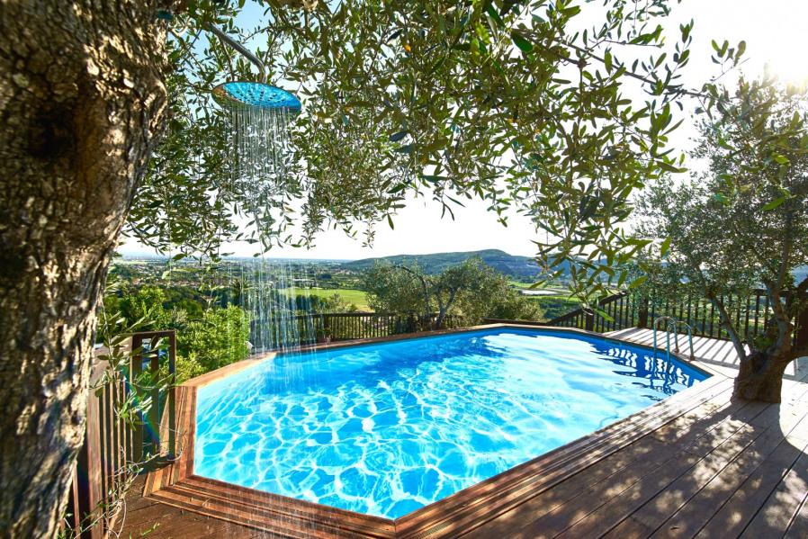 La piscine avec la douche de l' olivier!