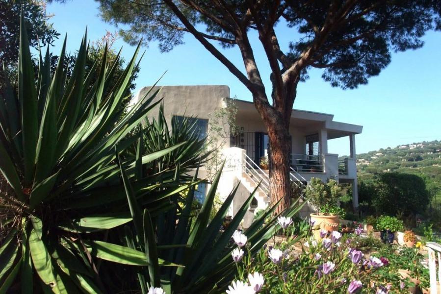 Location studio Coeur sur mer - Presqu'ile de Saint Tropez - La Croix-Valmer