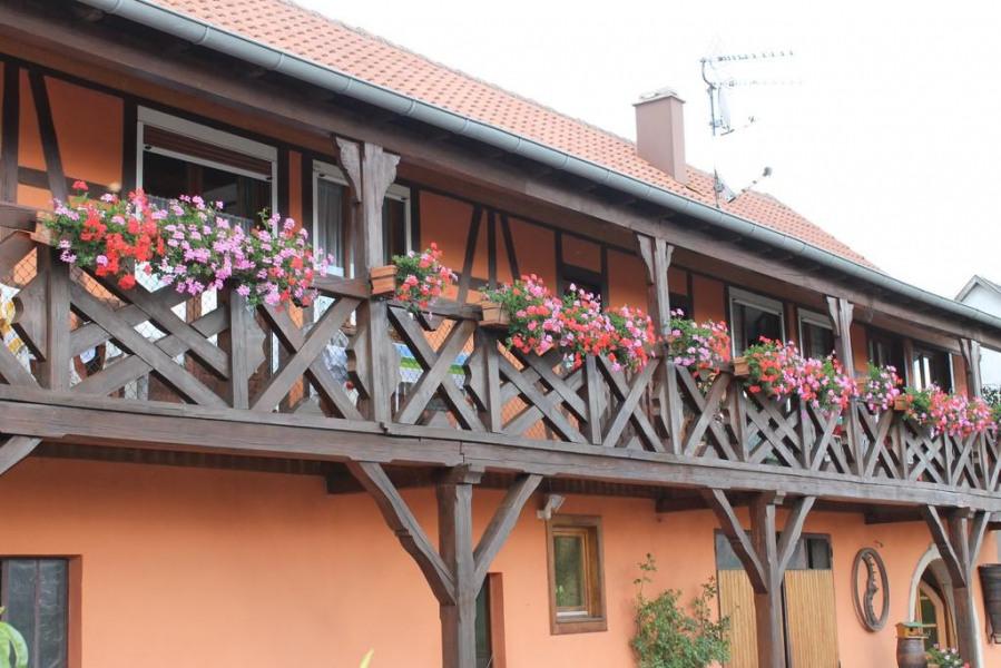 Appartement à louer chez le viticulteur