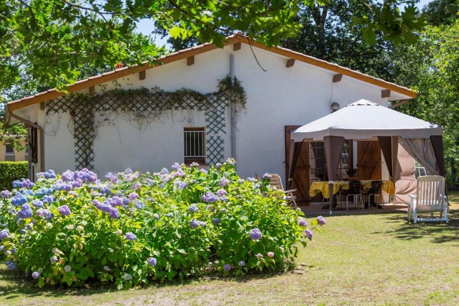 Maison Maison traditionnelle grand terrain boisé, garage