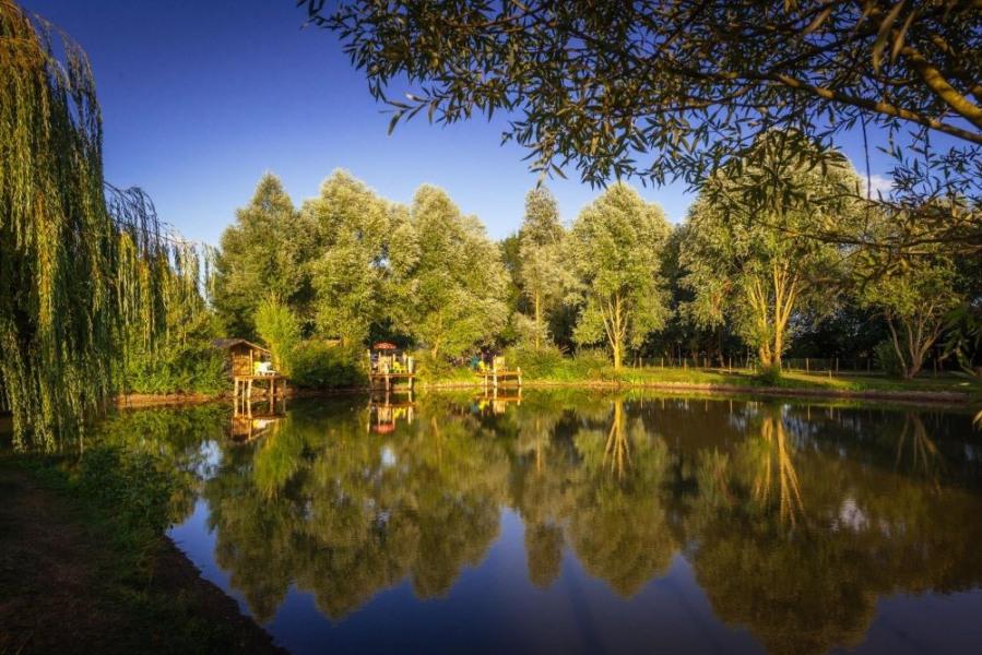 Camping Sites et Paysages DE L'ÉTANG, 97 emplacements, 41 locatifs