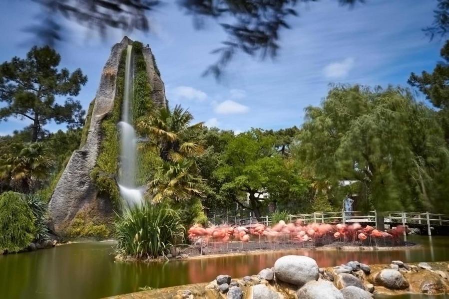 zoo de la palmyre à 5 minutes