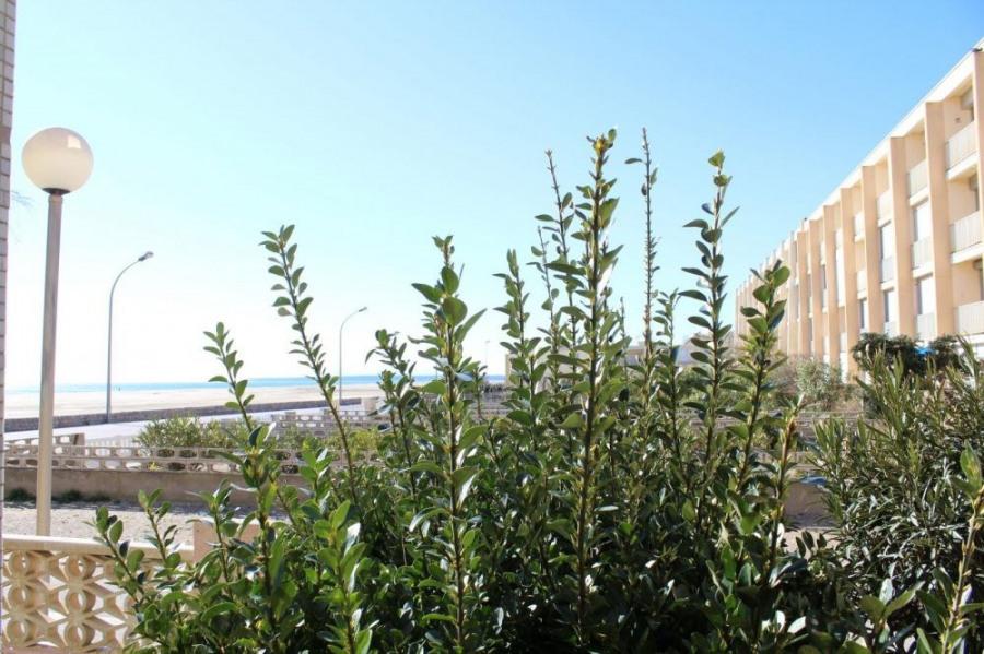 Appartement 2 pièces de 30 m² environ pour 4 personnes, situées à 10 m de la plage et à 500 m du centre de la station...