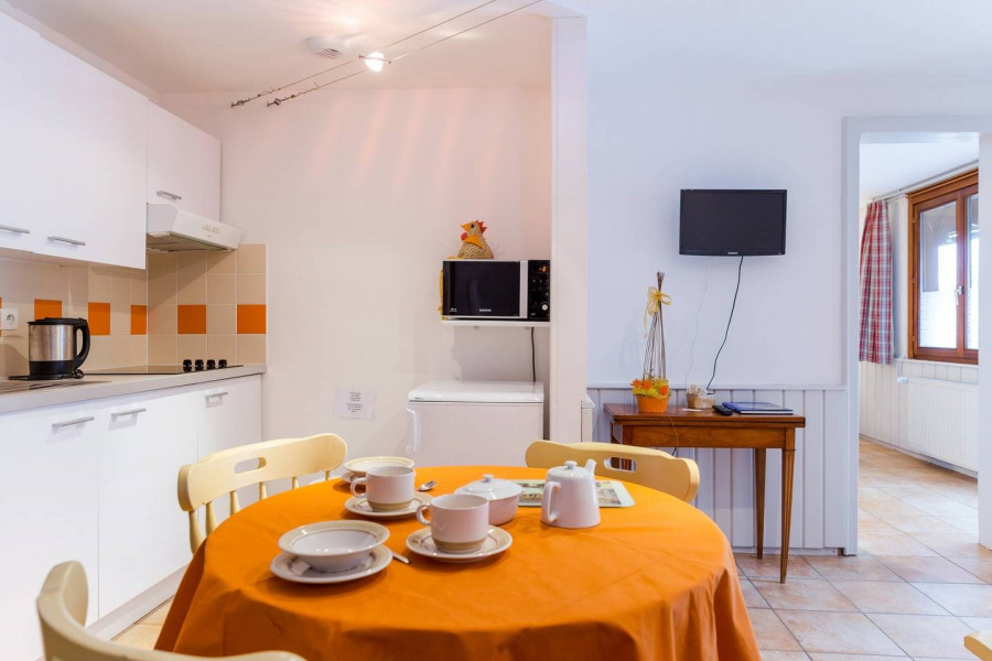 Holiday rentals Hunawihr - Apartment - 2 persons - Garden furniture - Photo N° 1