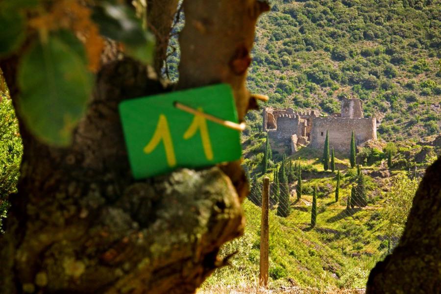 Camping Eco-citoyen au milieaux du Pays Cathare