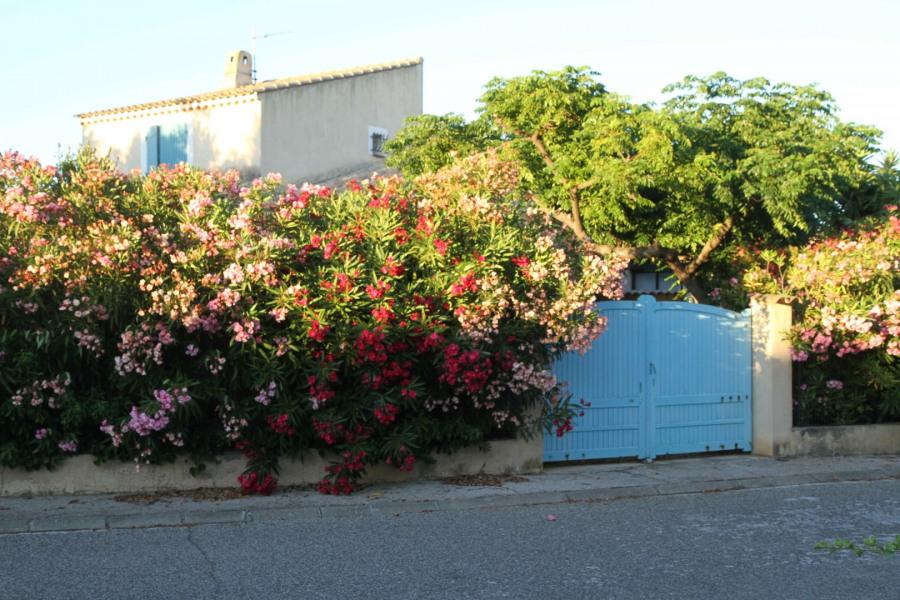 Location vacances Six-Fours-les-Plages -  Maison - 10 personnes - Barbecue - Photo N° 1