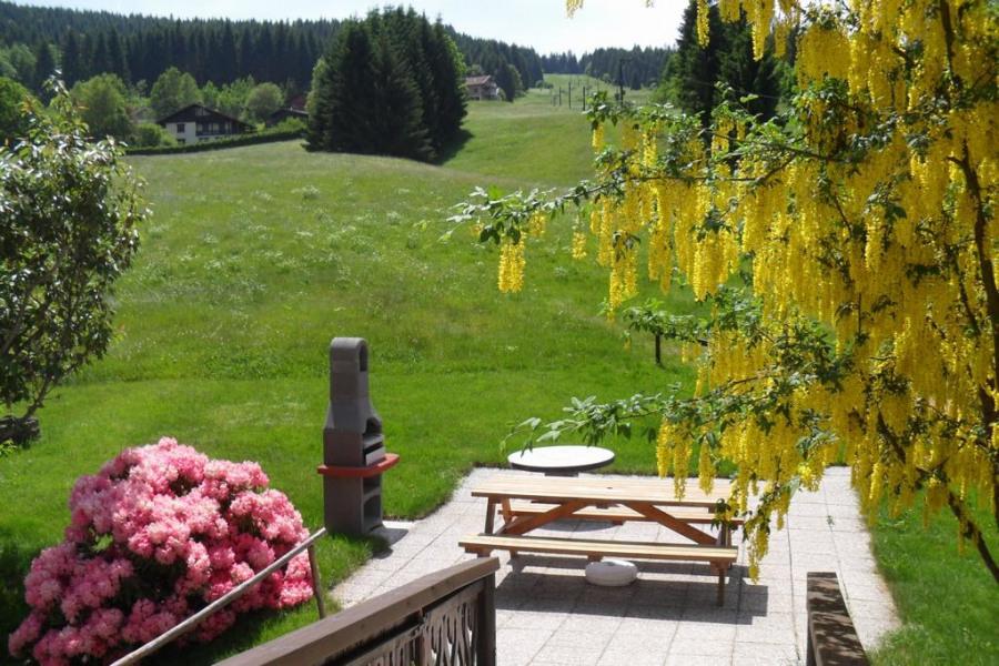 terrasse, barbecue et 3 ha de terrain :))