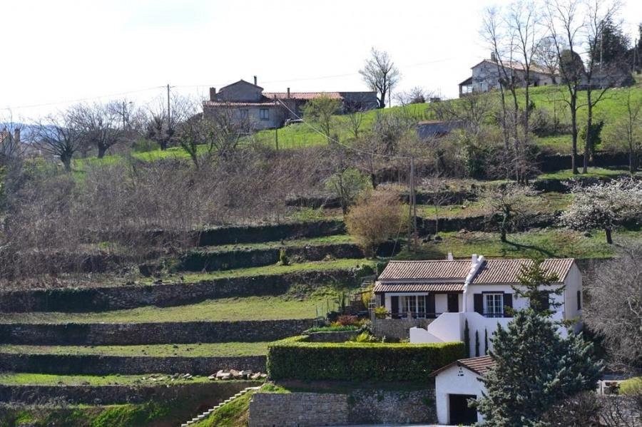 la villa et son environnement