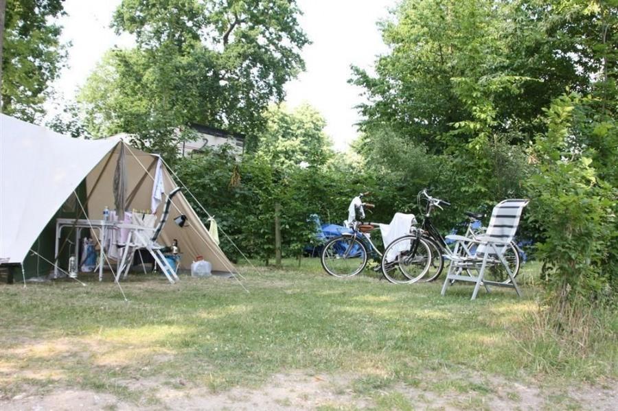 Camping de la Forêt, 80 emplacements, 23 locatifs