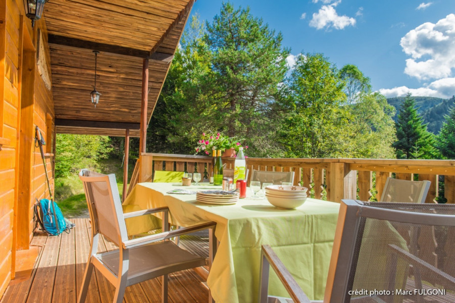 Location vacances La Bresse -  Maison - 8 personnes - Barbecue - Photo N° 1