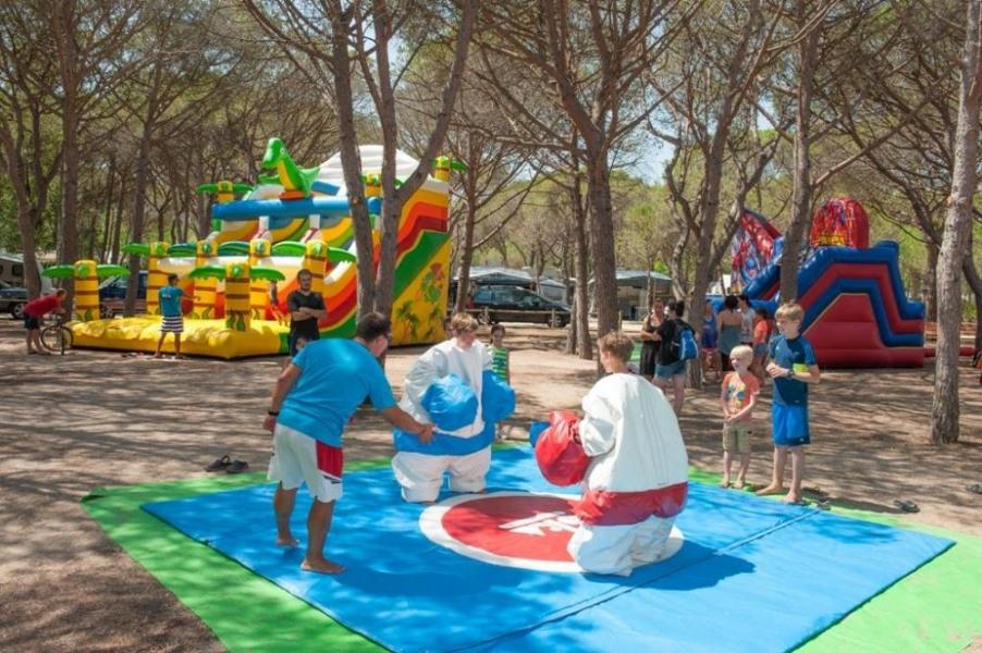 Camping Playa Brava, 750 emplacements