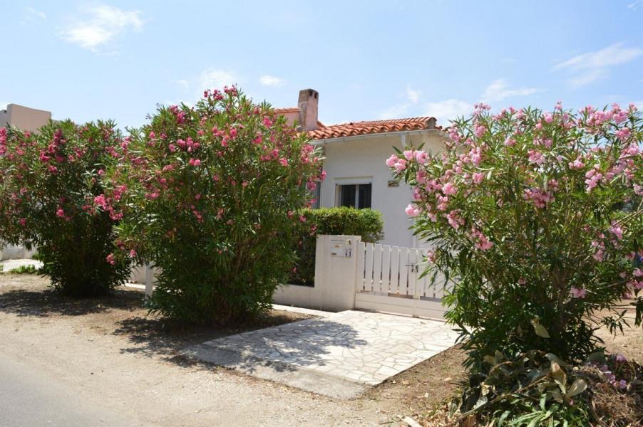 Location vacances Argelès-sur-mer -  Maison - 6 personnes - Jardin - Photo N° 1