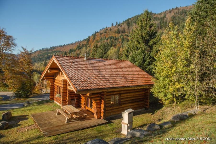 Les Vosges, superbe Chalet rondins de standing 8/10 personnes, 130m², 4 ch, 2 salles de bain, calme, terrasse avec ba...