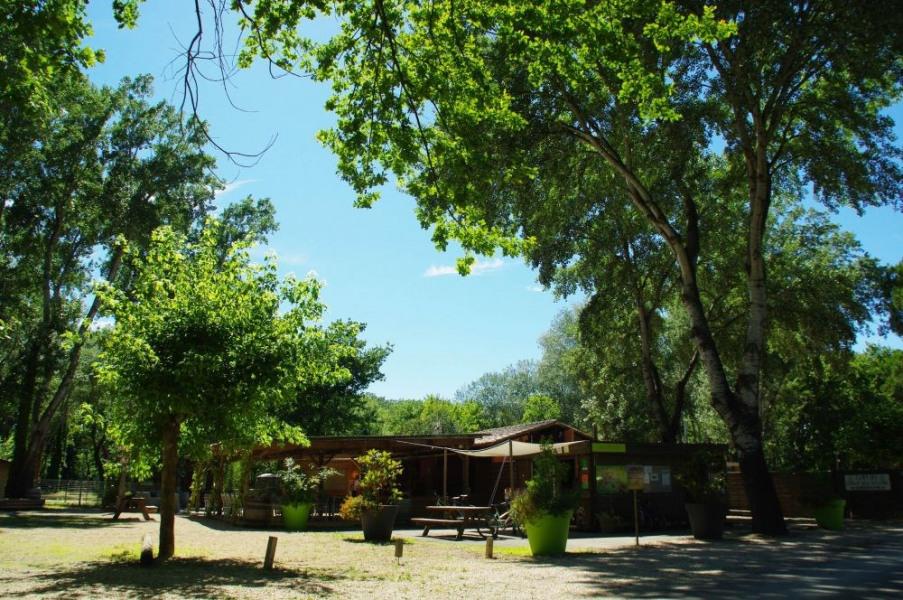 Camping l'Art de Vivre, 76 emplacements, 15 locatifs