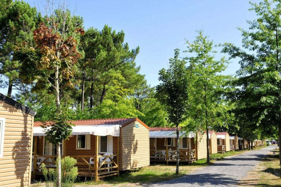 Campéole Le Lac de Sanguinet, 204 emplacements, 141 locatifs